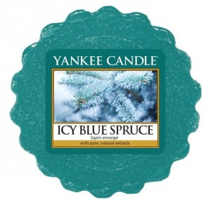 YANKEE CANDLE Wax Wosk Tarta ICY BLUE SPRUCE