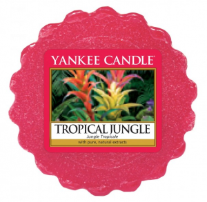 YANKEE CANDLE Wax Wosk Tarta TROPICAL JUNGLE